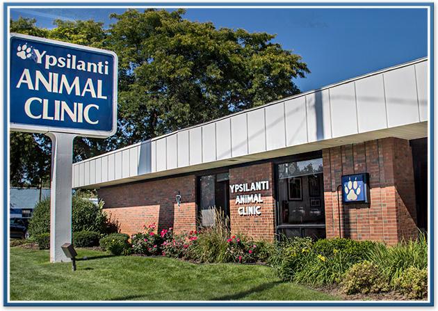 Ypsilanti Animal Clinic Tour Ypsilanti Animal Clinic