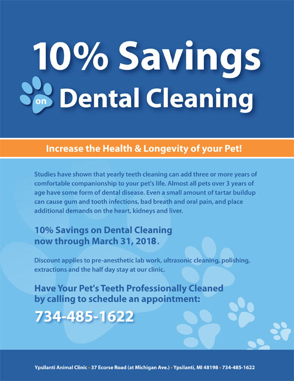 ypsilanti pet dental special 2018 jpg